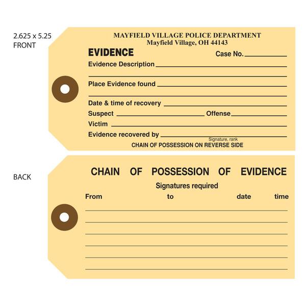 detectives and investigators